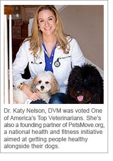 Dr. Katy Nelson, DVM was voted One of America's Top Veterinarians. She's also a founding partner of PetsMove.org, a national health and fitness initiative aimed at getting people healthy alongside their dogs.