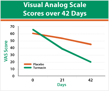 Visual Analog Scale Scores over 42 Days
